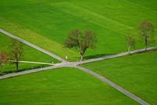 CANADA GREEN LANDSCAPE+
